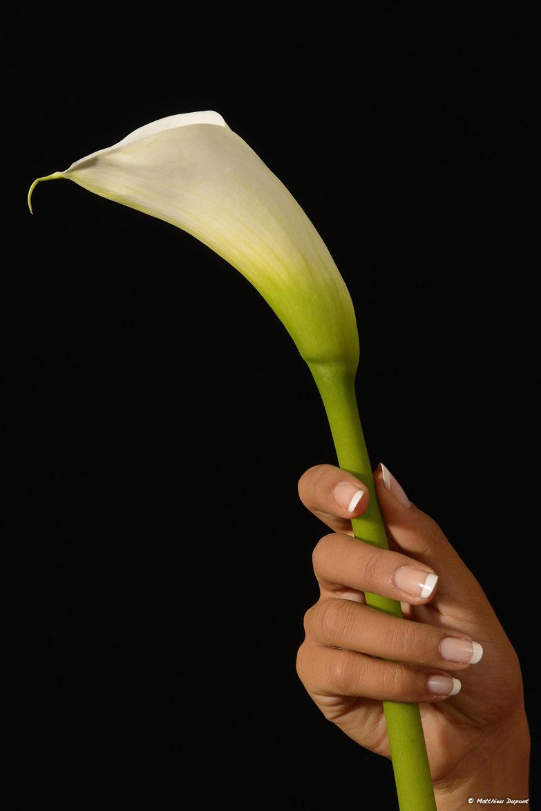 Fleur à la main