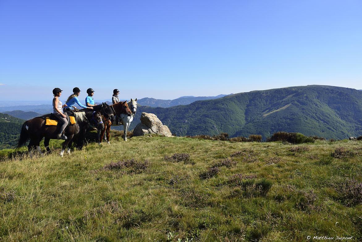 randonnee-equestre-ardeche-matthieu-dupont2